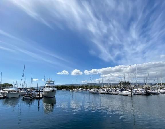 Sunny marina sky 1